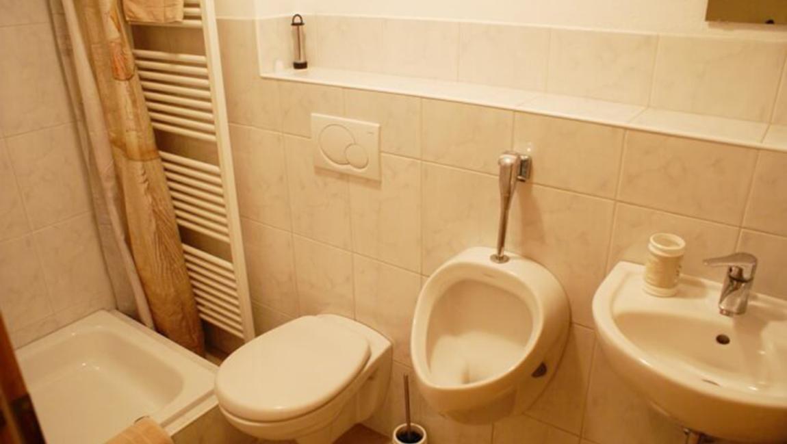 Apartment Gottmadingen A1 Dusche WC