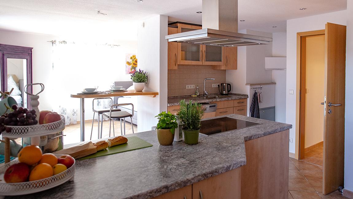 Apartment Gottmadingen A2 Küche Essbereich