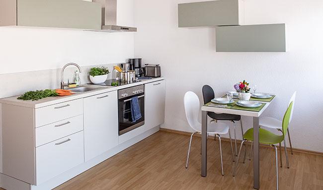Apartment Gottmadingen A3 Küche